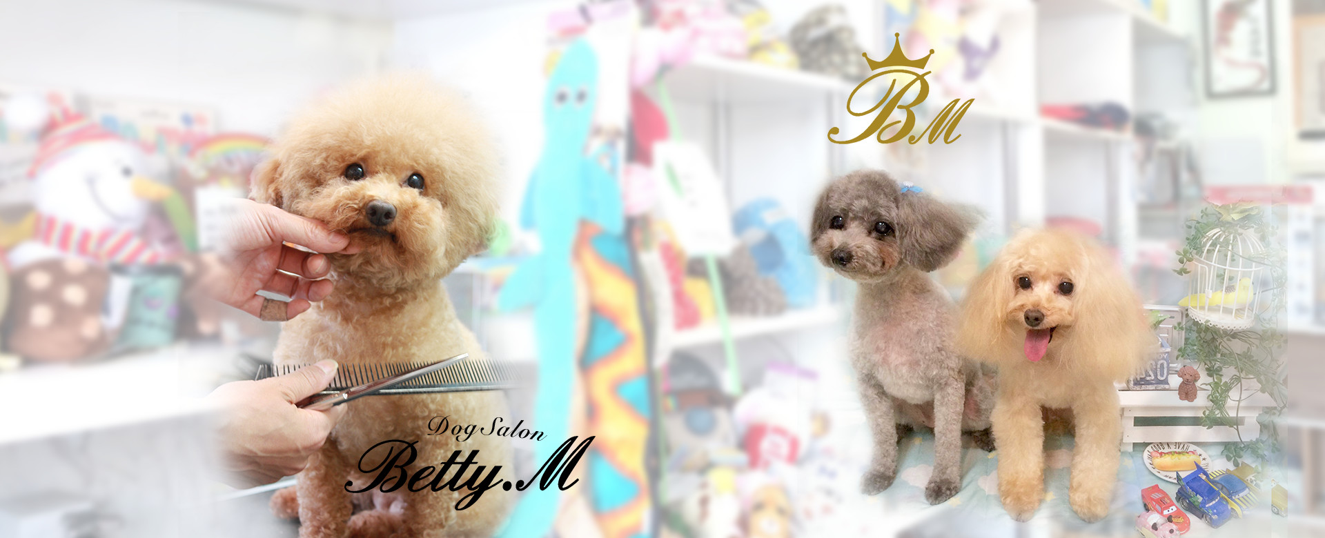 Dogsalon Betty.M
